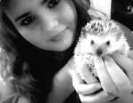 Erizo My hedgehog Reggie c: - Macho (1 año)